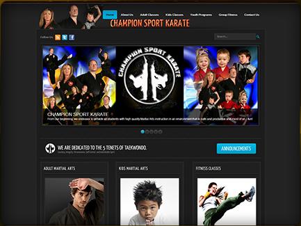 Combat Sport Karate